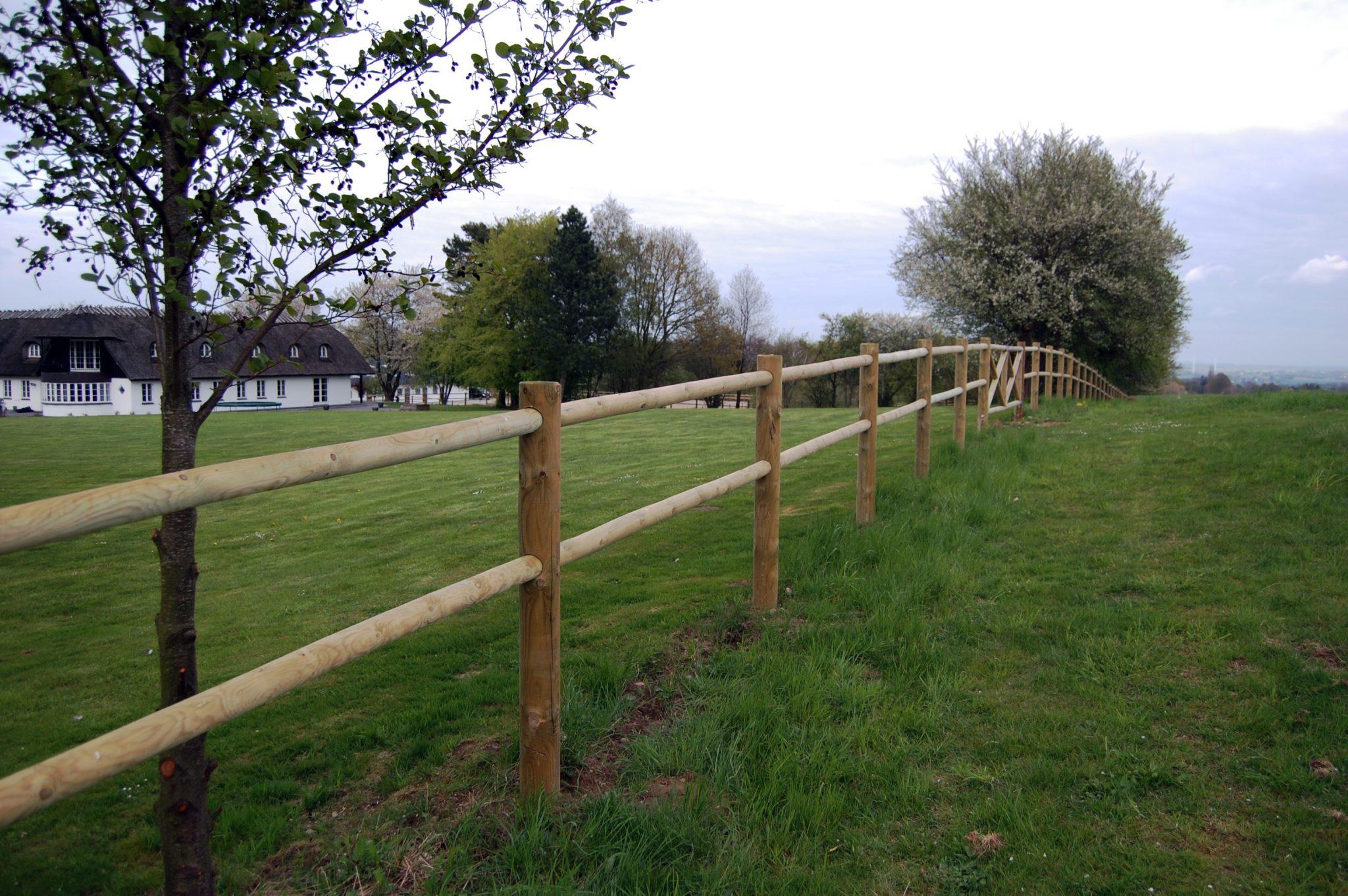 hegn ved græs